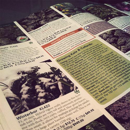 West Coast Seeds Catalogue, Jason Landry, 2012